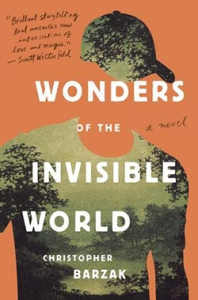 Wonders of The Invisiable